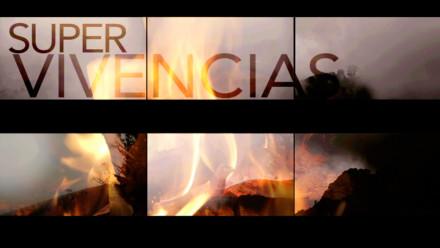 2013 – Supervivencias de Clemencia Echeverri
