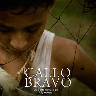 2016 – Callo Bravo – Short Film